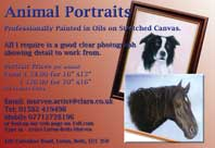 Animal portraits - professionally painted in oils on stretched canvas