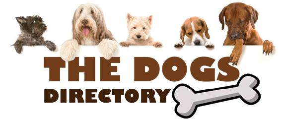 dog breeders, kennels, groomers to dog walkers and veterinary surgeons to pet insurance - Directory