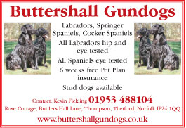 Buttershall Gundogs